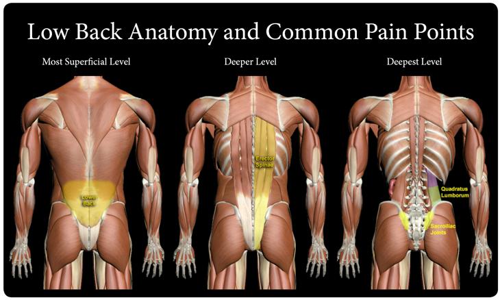 Bekend Pijn in je onderrug bij het hardlopen wordt vaak veroorzaakt door  NJ56