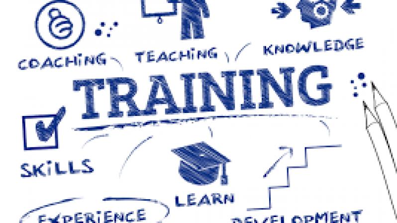 Fitness Training Voor Vrouwen: Trainingsschema